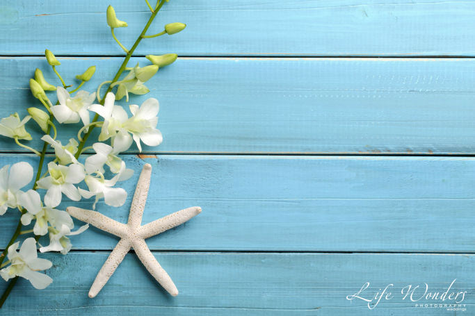 Sea stars as beach wedding favor