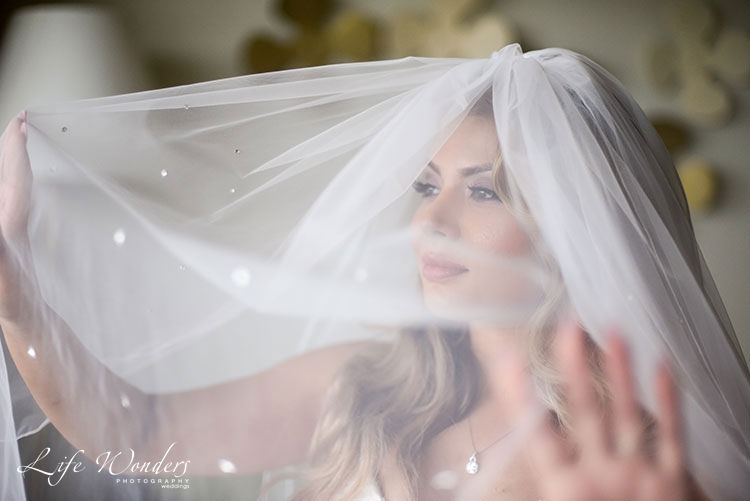 Bride and veil photo
