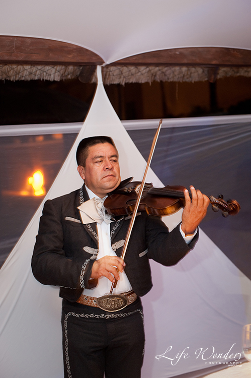 violin player of mariachi band