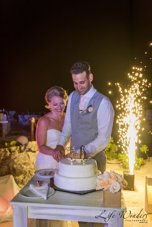 smiling bride groom cutting wedding cake with fireworks on the background